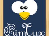 Connaissez-vous PrimTux, le système d'exploitation pour enfants ?
