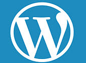 WordPress passe en version 5.1 et donne des informations sur la santé des sites