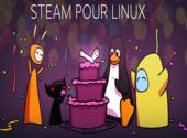 Steam: La version Linux disponible