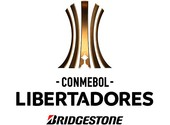 How to watch the Copa Libertadores for free?