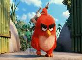Angry Birds le film : les jeux pour redécouvrir la saga