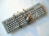 Les astuces pour protéger un document Microsoft Word
