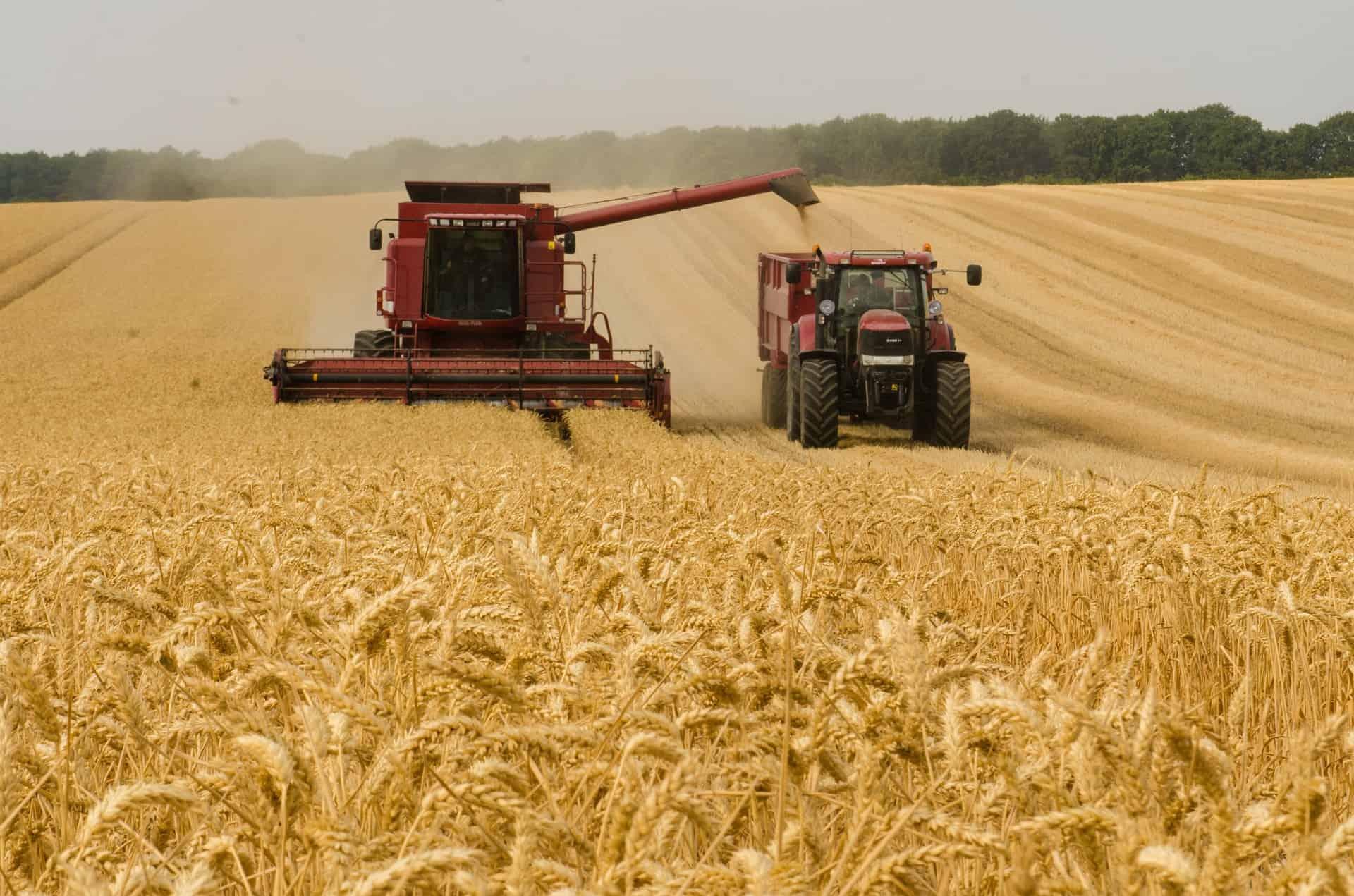 Quel logiciel de gestion agricole choisir pour votre activité ?