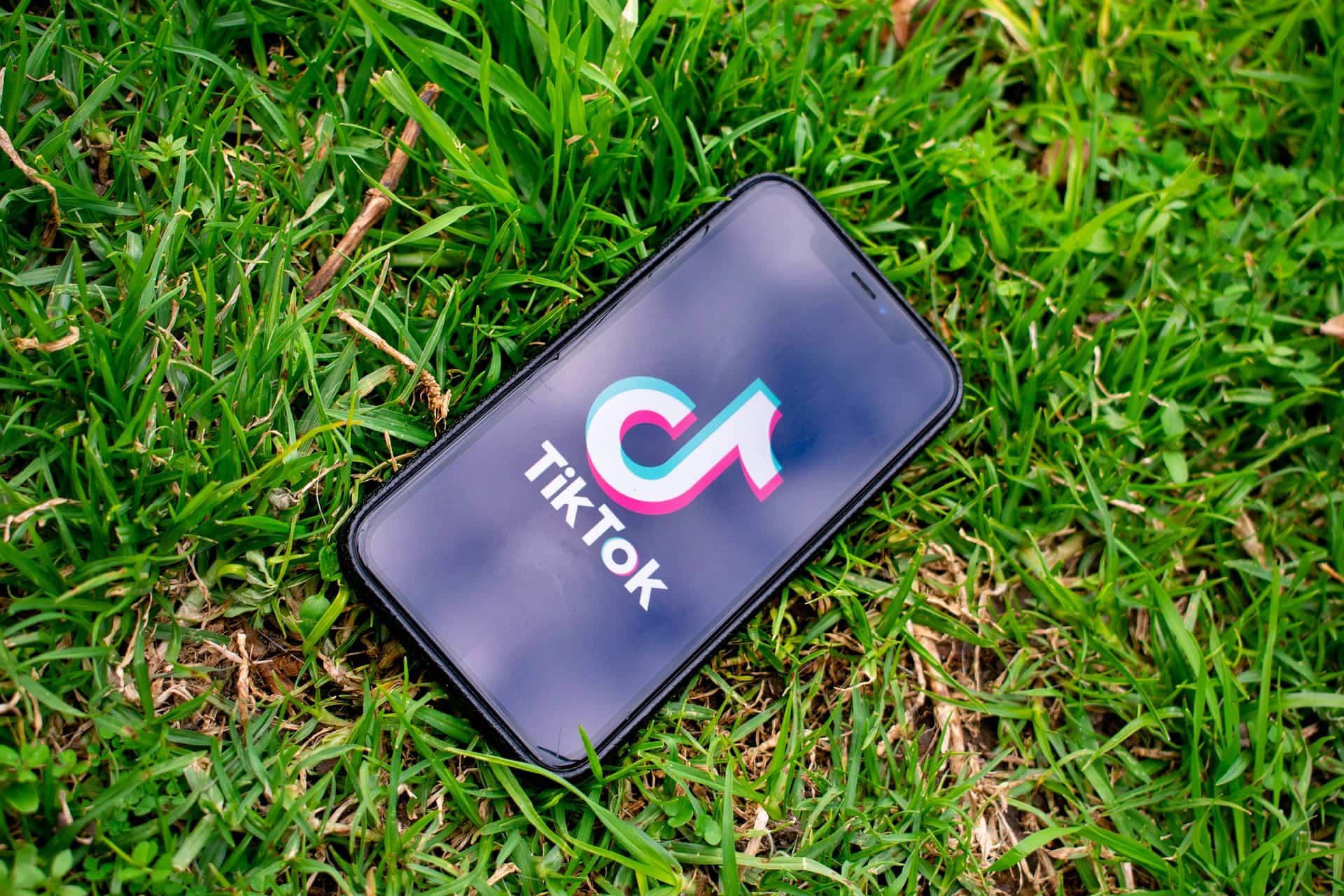 L'Inde bannit 59 jeux et applications mobiles d'origine chinoise, dont TikTok