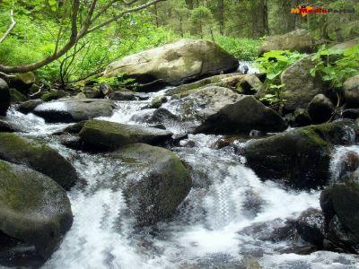 Capture d'écran Watercourse Screensaver