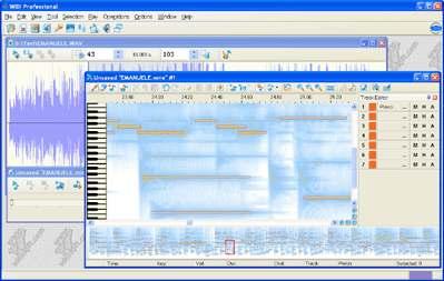 Capture d'écran WIDI Recognition System Professional