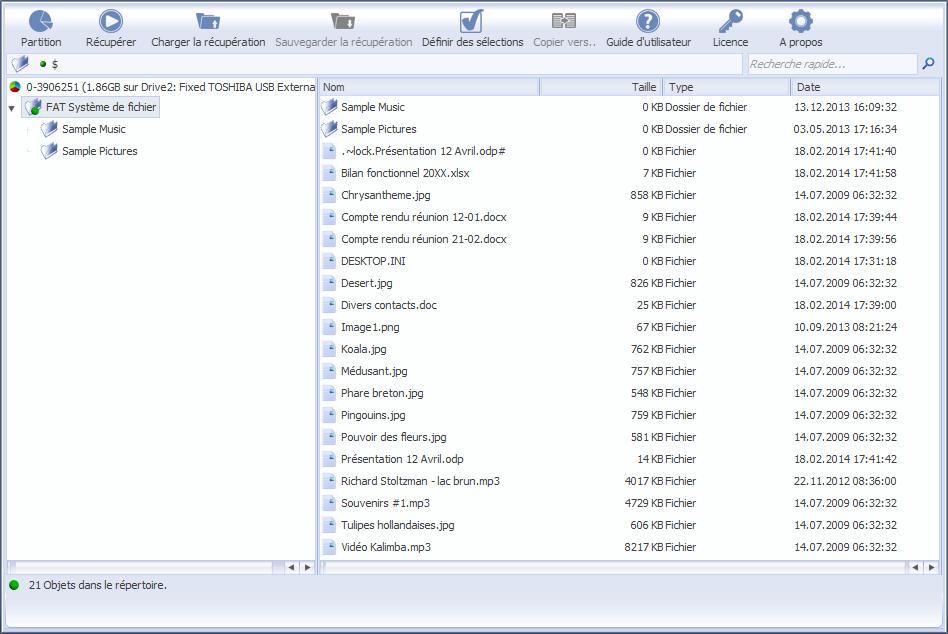 Capture d'écran Récupérateur de données Professionnel