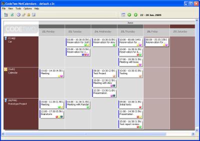Capture d'écran CodeTwo NetCalendars