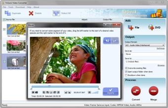Capture d'écran YoSock DVD Video Converter