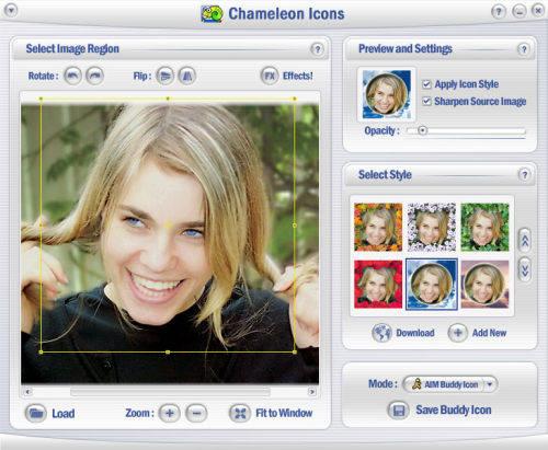 Capture d'écran Chameleon Icons