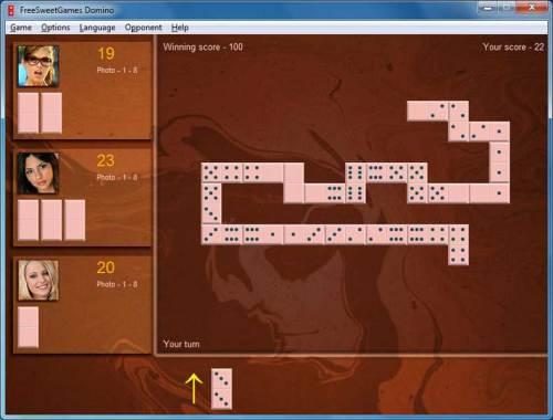 Capture d'écran FreeSweetGames Domino