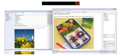 Capture d'écran BlogJet