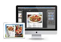 Flip PDF Professional 2.2.2
