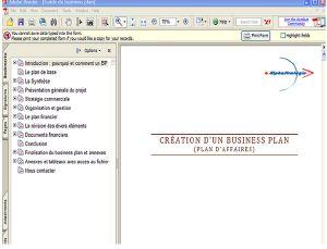 Capture d'écran Guide du Business Plan 2007-2008