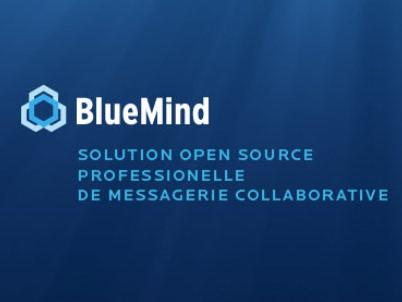 Capture d'écran Bluemind