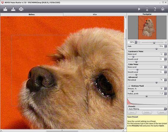 Capture d'écran AKVIS Noise Buster Mac