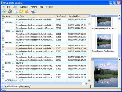Capture d'écran Duplicate Checker