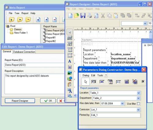 Capture d'écran MetaReport Developer Kit