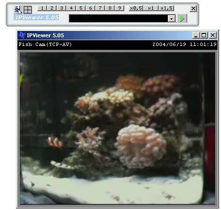 Capture d'écran IPViewer for dlink camera