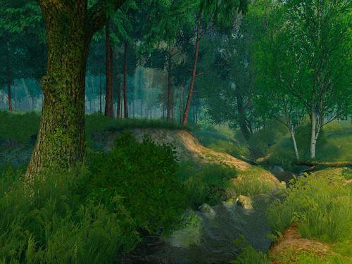 Capture d'écran Summer Forest 3D Screensaver