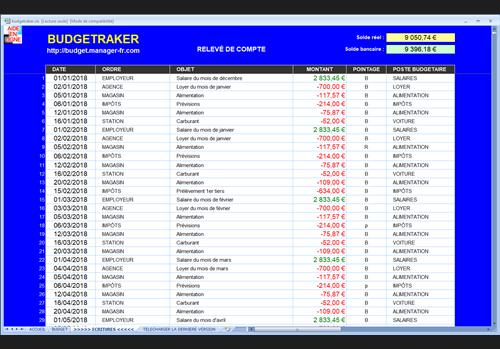 Capture d'écran BUDGETRAKER – Excel®