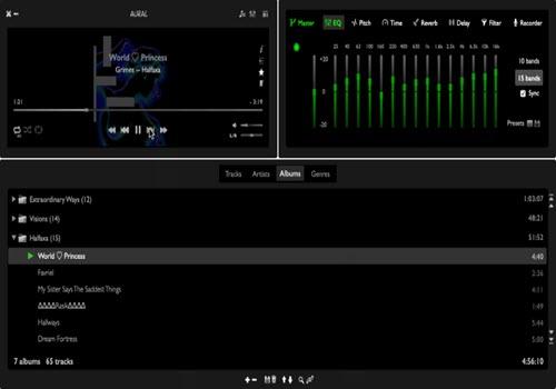 Capture d'écran Aural Player Mac