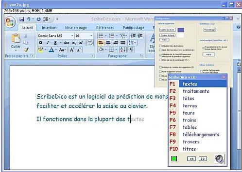 Capture d'écran ScribeDico