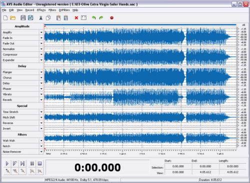 Capture d'écran AVS Audio Editor