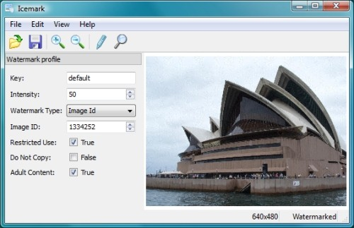 Capture d'écran Icemark