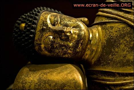 Capture d'écran ecran-de-veille.ORG Bouddhisme