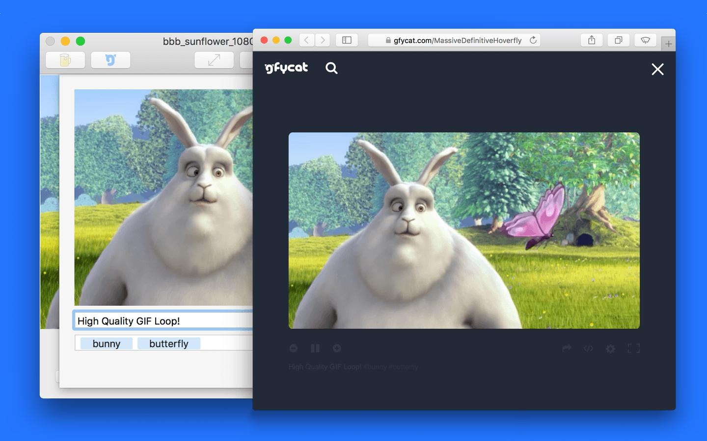 Capture d'écran GIF Brewery 3 by Gfycat Mac