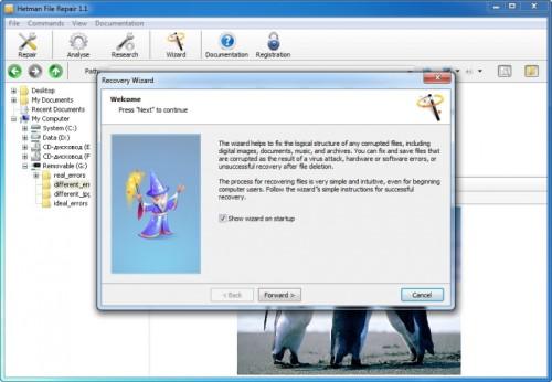 Capture d'écran Comfy File Repair