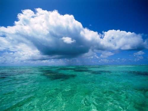 Capture d'écran Ocean