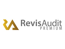 Capture d'écran RevisAudit Premium