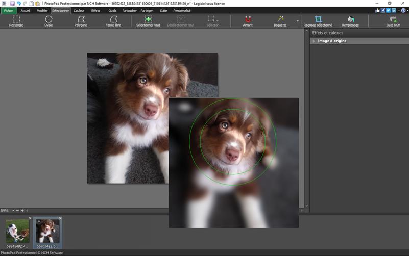 Capture d'écran PhotoPad – Éditeur d'images gratuit