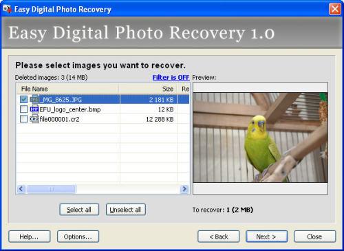 Capture d'écran Easy Digital Photo Recovery