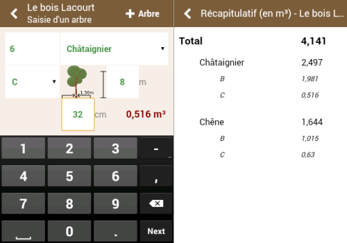 Capture d'écran KS Cubage – Bois sur pied