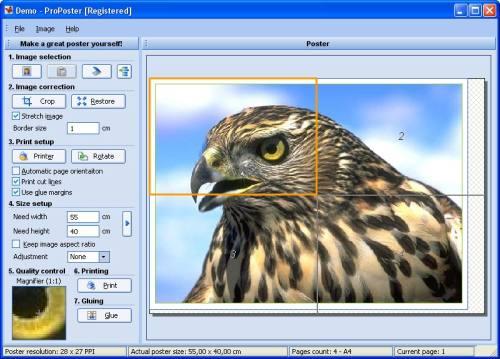 Capture d'écran ProPoster