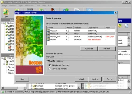 Capture d'écran Security Revisor for Windows Servers