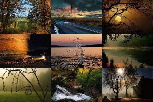 Capture d'écran Visions de la nature
