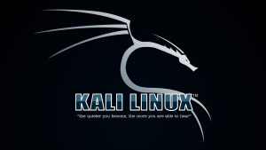 Capture d'écran Kali Linux