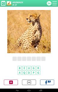 Capture d'écran 100 PICS Quiz