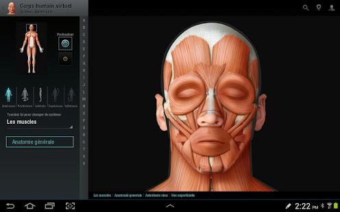 Capture d'écran Corps humain virtuel