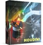 Capture d'écran Houdini
