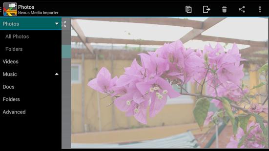 Capture d'écran Nexus Media Importer