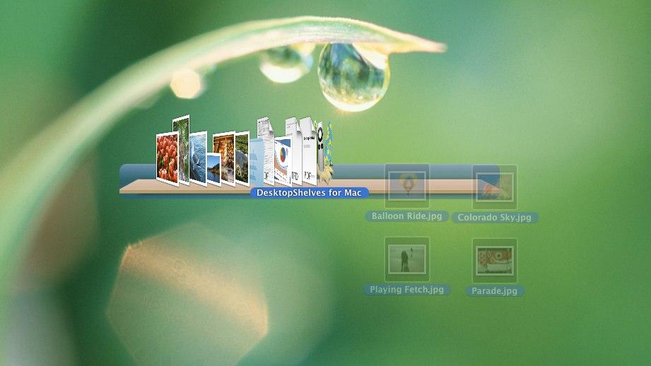 Capture d'écran DesktopShelves