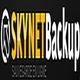 Logo SKYNET BACKUP