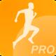 Logo Vitesse et Allure PRO