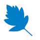 Logo StarLeaf Mac