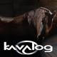 Logo Kavalog
